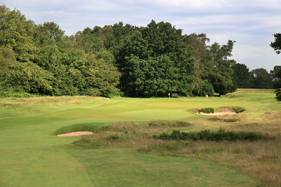 WaltonHeath_Old10FWClose_2313