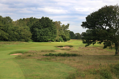 WaltonHeath_Old10FWClose_2314