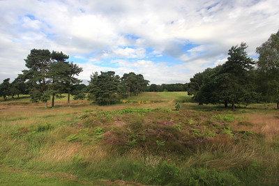 WaltonHeath_New18Tee_2284