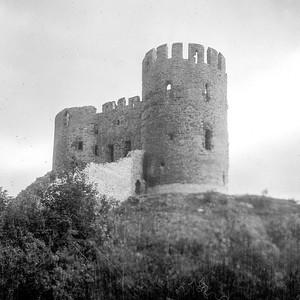 1948 Dudley Zoo