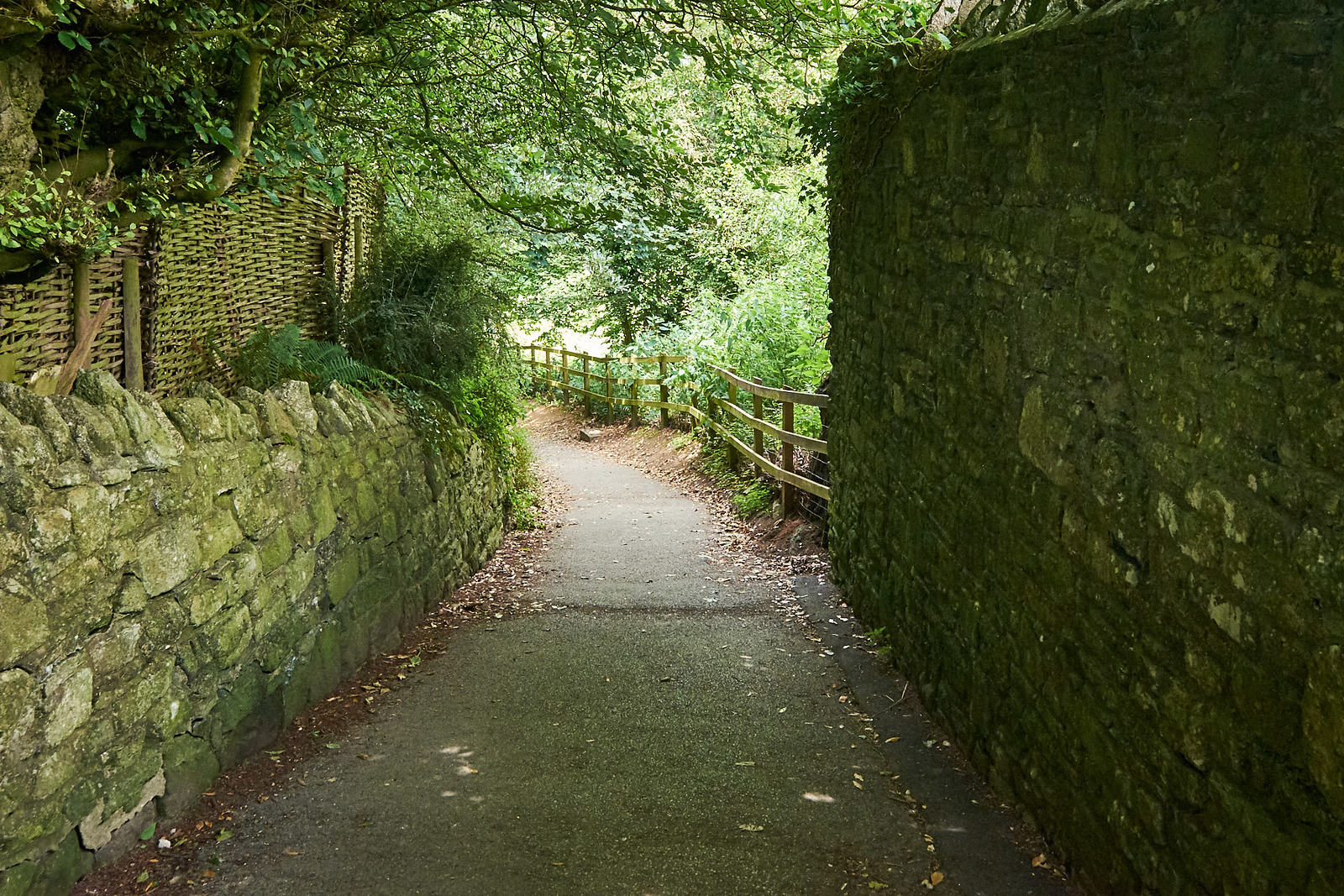 Corfe Castle Lane