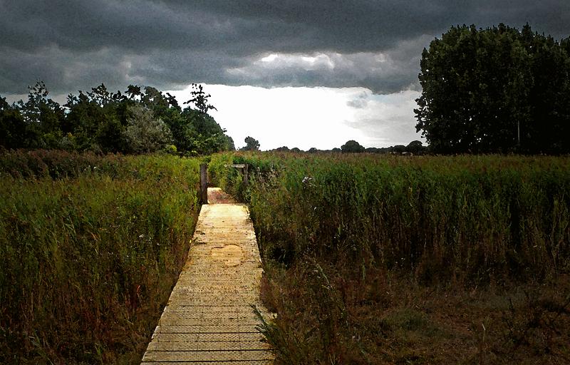 Footpath, Snape Maltings