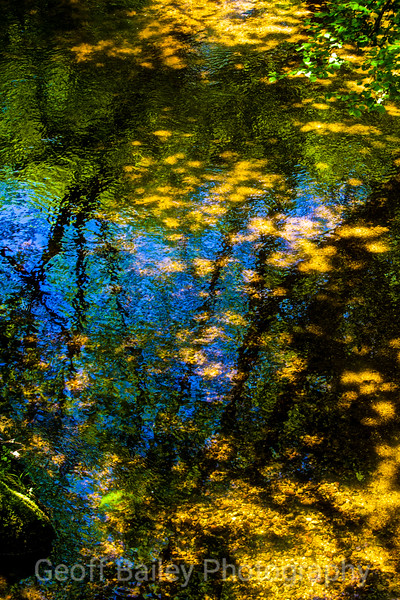 Reflections on Dartmoor