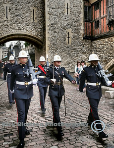 Tower Guards