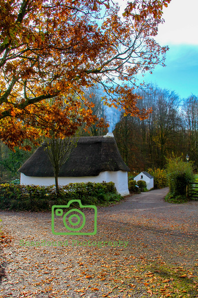 Welsh Thatched Cottage