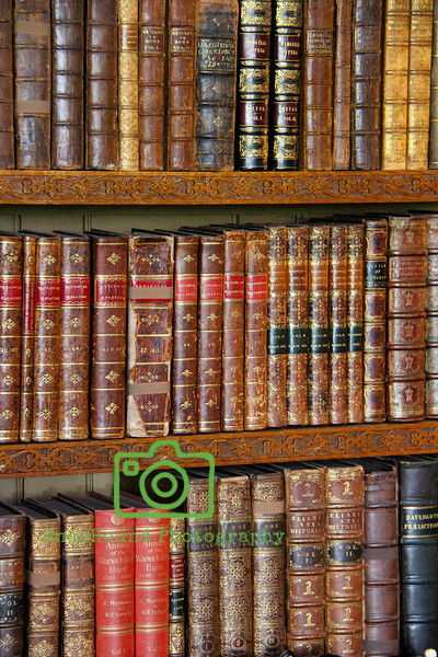 Antique Library Books