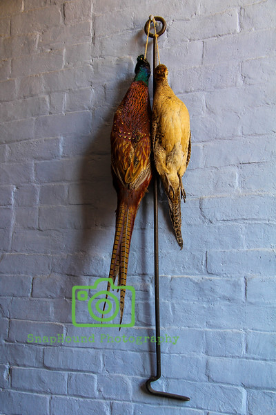 Hanging Game Birds