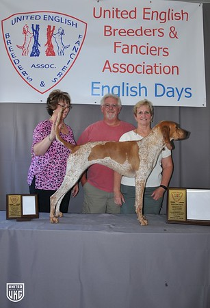 2017 UEB&FA English Days