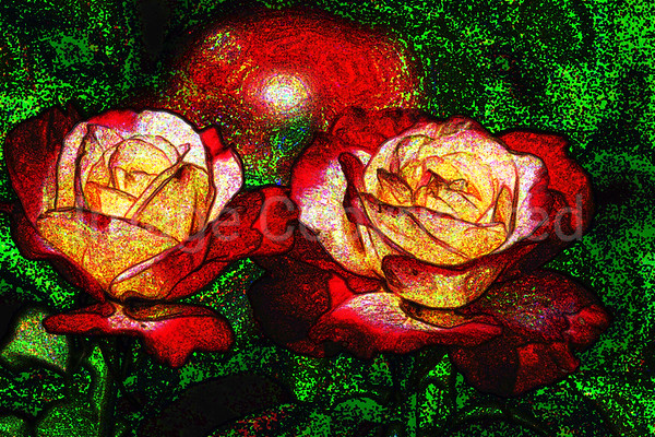 Twin Roses - 10/6/06