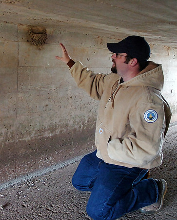 Aaron Betts, a wildlife biologist from the United States Department of Agriculture assigned to Vance Air Force Base, points to a swallow nest under a low bridge as he discusses BASH, the bird aircraft strike hazard program Tuesday, April 29, 2014. The Vance Safety Office assists Betts with the wildlife and habitat management near the airfield flight area. (Staff Photo by BONNNIE VCULEK)