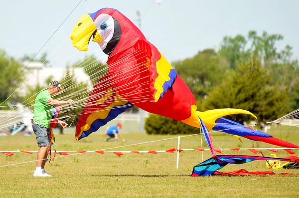 Kites Over Enid