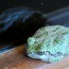 Misplaced Frog