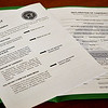 Daily Election Filings