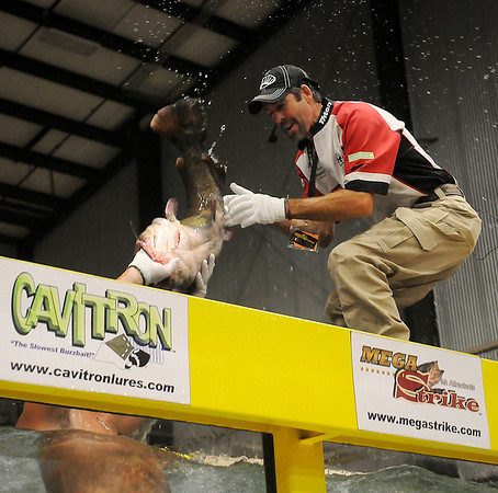 """Don """"Katt Daddy"""" Brewer (lower left) tosses a flathead catfish to Jason Reynolds during a noodling demonstration at the Greater Oklahoma Sportsman's Outdoor Expo at the Chisholm Trail Coliseum Saturday, August 24, 2013. (Staff Photo by BONNIE VCULEK)"""