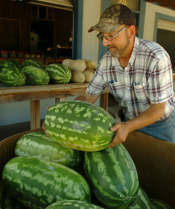 Dudley Young restocks green stripe watermelons for Cantellay's Produce at  1217 S. Van Buren Saturday, August 30, 2014. (Staff Photo by BONNIE VCULEK)