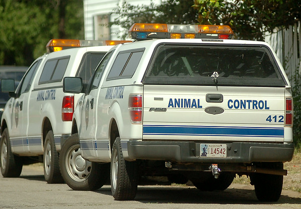 Enid Animal Control responds to the location of an Enid Police Department narcotics warrant search at 424 S. Monroe Thursday, August 14, 2014. (Staff Photo by BONNIE VCULEK)