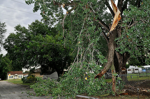 A large tree limb hangs from a tree on north Garfield Monday after a thunderstorm moved through the city. (Staff Photo by BILLY HEFTON)