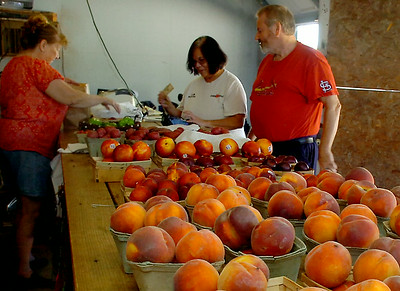 Idaho peaches, nectarines, plums, potatoes, okra and bell peppers line a table top as Gaye Cantellay (left), with Cantellay's Produce, helps her customers with a purchase Saturday, August 30, 2014. (Staff Photo by BONNIE VCULEK)