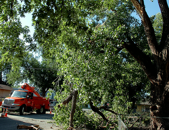 OG&E line crew technicians restore electric service to homes near Garfield and Maple Tuesday, after a severe thunderstorm's high winds damaged trees in the neighborhood late Monday, August 18, 2014. (Staff Photo by BONNIE VCULEK)