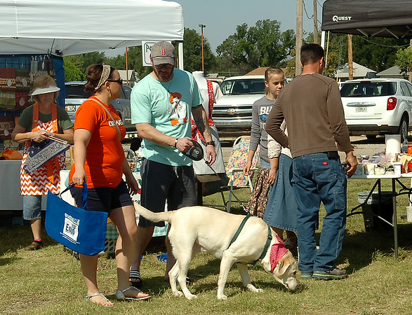 Karma, a labrador retriever, sports a new bandana as she shops with Robin Hoile and Shane Cockrell at Enid Farmers Market Dog Days of Summer Saturday, August 02, 2014. (Staff Photo by BONNIE VCULEK)