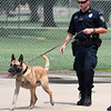 EPD officer Cody Smith walks Fett to a drug certification test Wednesday August 9, 2017 at the Garfield County Sheriff's office. (Billy Hefton / Enid News & Eagle)