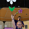 Brynna Brownell holds up the first white promise flower in Oklahoma before the start of the Walk to Enid Alzheimer's Friday August 4, 2017 in downtown Enid. The white promise flower is for the first alzheimer's survivor that is yet to come. (Billy Hefton / Enid News & Eagle)