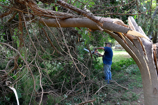 Don Hurrelbrink uses a chainsaw  to cut limbs of down trees at his sister's home in Ames Tuesday, August 13, 2019. (Billy Hefton / Enid News & Eagle)