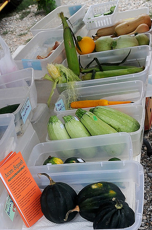 Different varieties of squash, fresh corn-on-the-cob, cucumbers and sweet onions were available at Enid Farmers Market Saturday. (Staff Photo by BONNIE VCULEK)