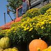 Beautiful mums and decorative pumpkins surround an outside display at Jumbo Foods in Willow Plaza Wednesday. (Staff Photo by BONNIE VCULEK)