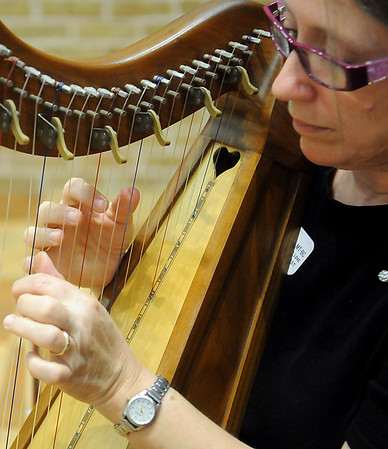 Elizabeth Allen, Circle of Love music therapist, plays the folk harp during the Hospice Circle of Love Tree of Life lighting ceremony Sunday at the NOC-Enid Gantz Center. (Staff Photo by BILY HEFTON)