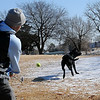 Hamilton Wheeler strikes a tennis ball with a golf club as Woody, his six-year-old black lab retrieves the ball at Meadowlake Park North Tuesday, Dec. 10, 2013. (Staff Photo by BONNIE VCULEK)