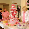 Andrea Kighea, Cindy Cartmill, Connie Leverance, Mindy Simunek, Alicia Vanhooser, MD, and Stephanie DeClerck ( from left) enjoy the Pink Party at St. Mary's Women's Imaging Friday, Dec. 13, 2013. The Pink Ribbon facility has been recognized for excellence in breast health and exceptional commitment and support to the women our community. (Staff Photo by BONNIE VCULEK)