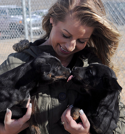 Rachel Hancock holds two littermate puppies inside the outside runs at the Enid Animal Control Wednesday, DEc. 18, 2013. (Staff Photo by BONNIE VCULEK)