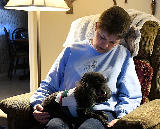 Mary Ann Ools holds her poodle, Benji, during an interview about coyotes attacking the dog, (Billy Hefton / Enid News & Eagle)