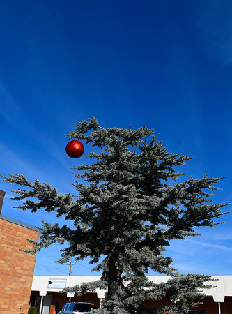 A Christmas ornament hangs froma tree on west Maine Friday, December 6, 2019. (Billy Hefton / Enid News & Eagle)