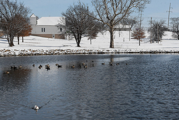 Water fowl on the waters of a snow covered Government Springs Park Monday, December 14, 2020. (Billy Hefton / Enid News & Eagle)