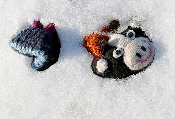 A child's slipper remains frozen in ice and snow after an afternoon of snowmen building fun Thursday. Schools across Enid were back in session Friday, Feb. 22, 2013. (Staff Photo by BONNIE VCULEK)