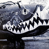 One of John Campbell's favorite aircraft nose art photos is a snappin' n'a bitin'. Campbell, who lives in Enid, has been collecting military aircraft photographs since the age of 6. (Staff Photo by BONNIE VCULEK)