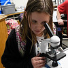 Chisholm Elementary student,Breanna Kuehn, looks through a microscope bought by the Chisholm School Foundation. (Billy Hefton / Enid News & Eagle)