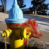 A thin dusting of snow covers a yard in Willow West as a ribbon bedazzles a fire hydrant Thursday, Jan. 02, 2014. (Staff Photo by BONNIE VCULEK)