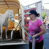 Deborah Faulk coaxes the last horse out of the trailer as she and her son, Joel, saddle the horses for rides at Main Street Enid's Second First Friday July 11, 2014. (Staff Photo by BONNIE VCULEK)
