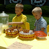 Isaac and Zach Piper (from left) serve refreshing homemade lemonade, chocolate chunk and oatmeal raisin cookies from their front yard lemonade stand Tuesday, July 29, 2014. The boys hope to earn enough money for a trip to Legoland during a California vacation in December. (Staff Photo by BONNIE VCULEK)