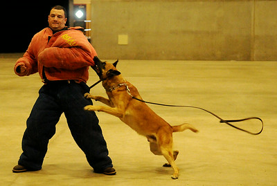 Shawn Brunzo wears a bite suit during an Enid Police Department K-9 demonstration with Duco at the Chisholm Trail Coliseum Saturday, July 19, 2014. (Staff Photo by BONNIE VCULEK)