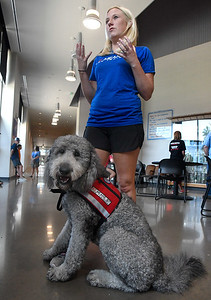 Wally, a golden doodle therapy dog, sits at the feet of Whitney Ostrom, of Sit Means Sit Dog Training during an interview, Friday, July 17, 2020 at Chisholm Elementary. Ostrom presented Wally to Shannon Goodwin, Chisholm Elementary counselor, during a small ceremony at the school. (Billy Hefton / Enid News & Eagle)