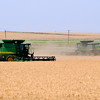 Combines harvest a wheat field south of Waukomis along US 81 Wednesday. (Staff Photo by BILLY HEFTON)
