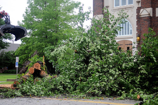 Josh Redding, with the City of Enid, manuevers a bucket toward a fallen American Elm in front of First Presbyterian Church, 502 W. Maine, after high winds moves across the area early Wednesday, June 5, 2013. City crews blocked the 500 block of Maine for several hours as they cleared the debris. (Staff Photo by BONNIE VCULEK)