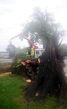 Josh Redding, with the City of Enid, removes debris from the 500 block of W. Maine after a massive American Elm in front of First Presbyterian Church was struck by lightning during a thunderstorm early Wednesday, June 5, 2013. (Staff Photo by BONNIE VCULEK)