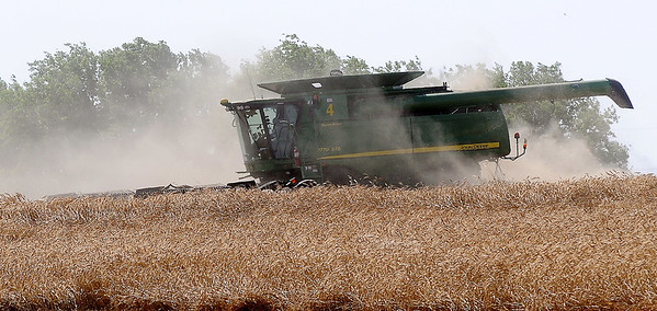 Uncut wheat hinders the view of a John Deere 9770 STS combine as harvest continues near Enid Friday, June 21, 2013. (Staff Photo by BONNIE VCULEK)