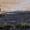 A booster line (left, center) appears on the ground as an Enid firefighter calls for assistance during a wheat field fire at 66th and Willow Tuesday, June 18, 2013. Following heavy rains early Monday morning, area wheat fields became muddy, making it difficult for firefighters to use their grass rigs in the fields. (Staff Photo by BONNIE VCULEK)