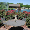 The Alvarado Ranch, owned by Magdalena and Jose Alvarado, has private seating areas, beautiful roses, a variety of trees, a walkway and dock area near their gazebo, an 11-foot-deep water area stocked with bass and catfish, a vegetable and cactus garden, and additional water features. The home at 3226 N. Washington was one of six featured in the Master Gardeners of Enid Garden Tour Saturday, June 1, 2013. (Staff Photo by BONNIE VCULEK)